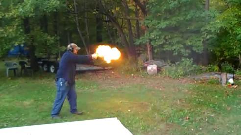 Arbre vs arme à feu